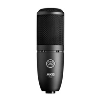 AKG P120 High Performance General Purpose Condenser Recording Microphone